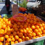 スペインのバレンシアオレンジ